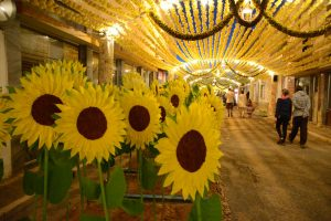 Festas de Santa Maria em Ermidas-Sado: Walt Disney, um cartaz de luxo e mais de um milhão de flores de papel