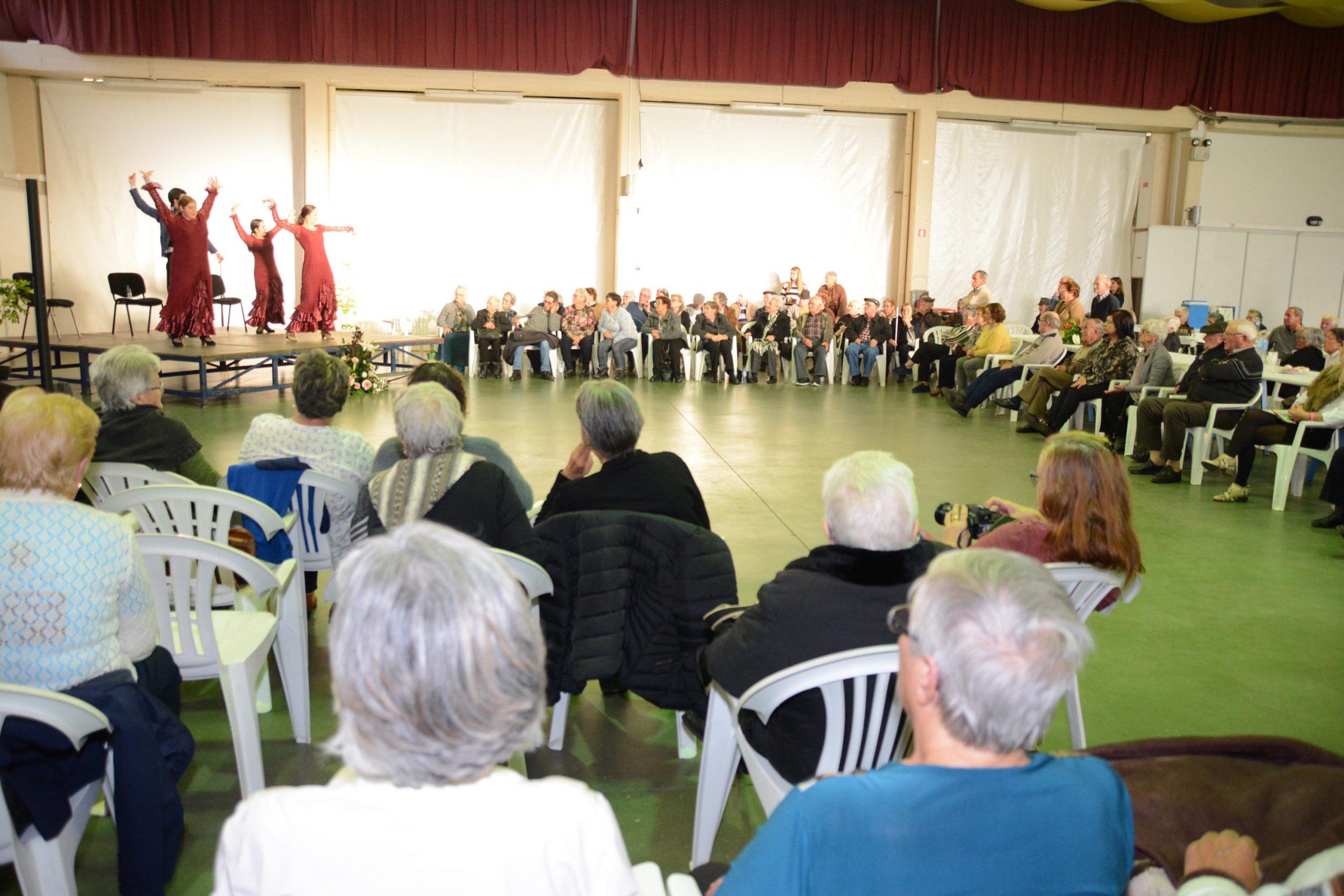 iniciativa com idosos