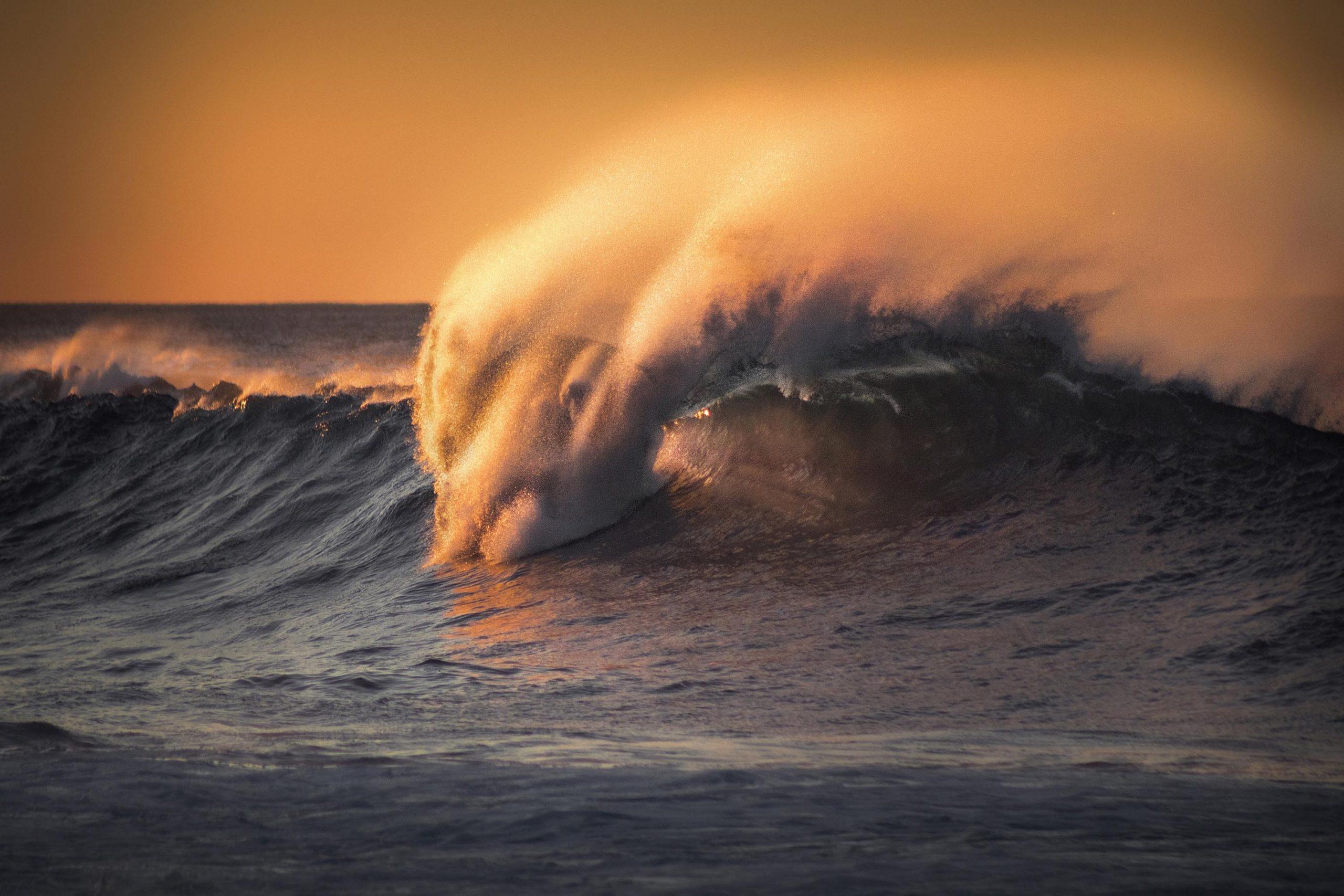 3º Ocean's Beauty_Andre Farinha