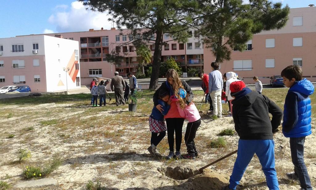 Plantação-árvores-01